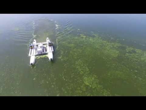 Field test of green algae removal robot
