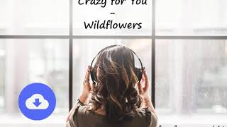 Crazy for You - Wildflowers [no copyright music] [free download]