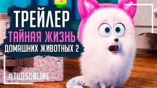Тайная жизнь домашних питомцев 2 | HD Трейлер | Русская озвучка Tuos ONline