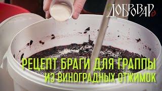 Брага для граппы из виноградных отжимок - рецепт - Добровар