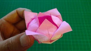 origami 【flower/lotus】