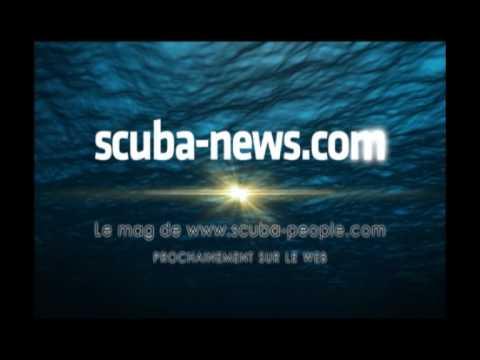 SCUBA NEWS