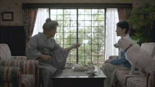 樋口可南子 笑福亭鶴瓶 ソフトバンク CM Kanako Higuchi/Syofukutei Tsu...
