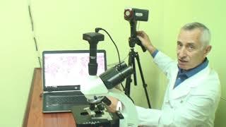 Современная диагностика кровообращения и общего состояния здоровья