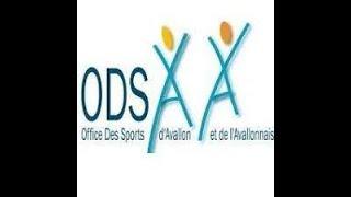 Les activités estivales dans l'Avallonnais avec l'ODSAA