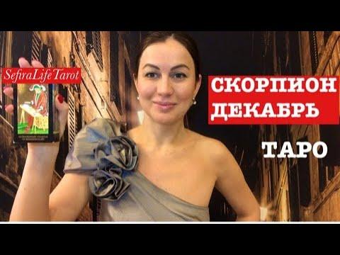 СКОРПИОН🌲ДЕКАБРЬ на ТАРО:инициатива и уверенность в себе💪🏻#скорпион#sefiralifetarot#декабрь#таро