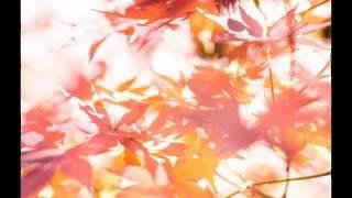 Beautiful J-POP JAZZ vocal &BGM 邦楽 名曲 ジャズ カバー集