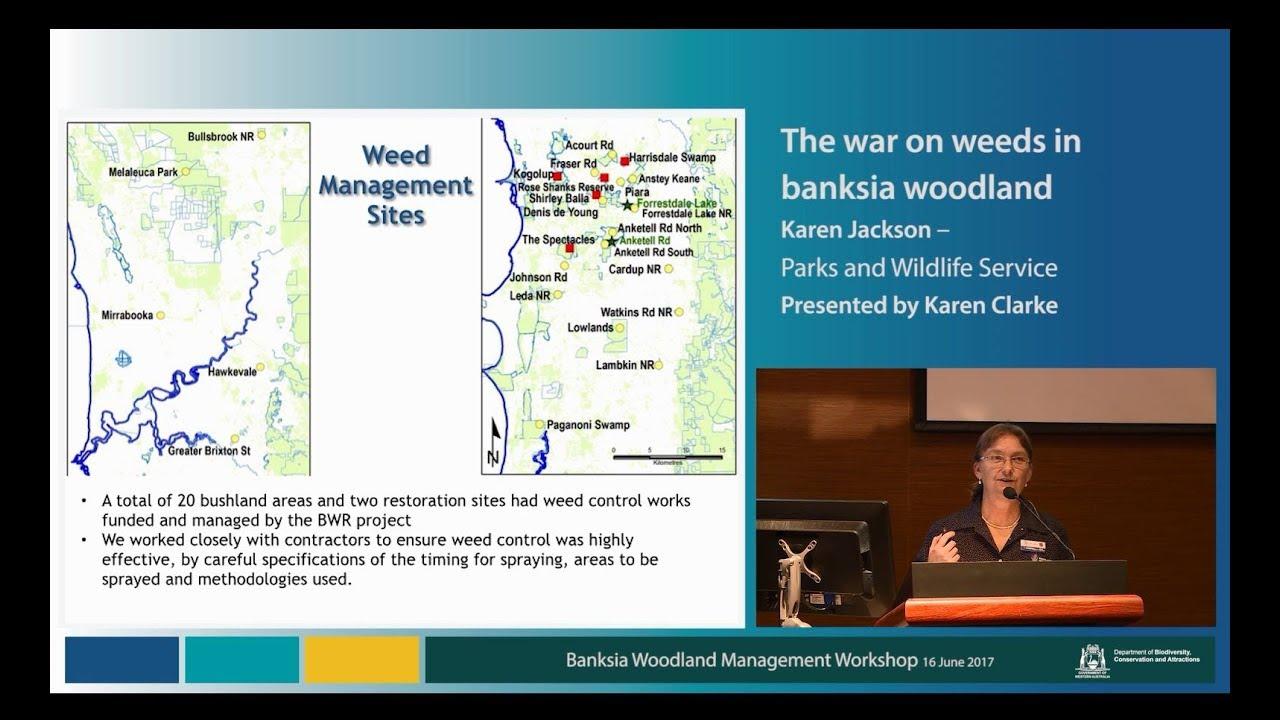 Karen Jackson – The war on weeds in banksia woodland, presented by Karen  Clarke