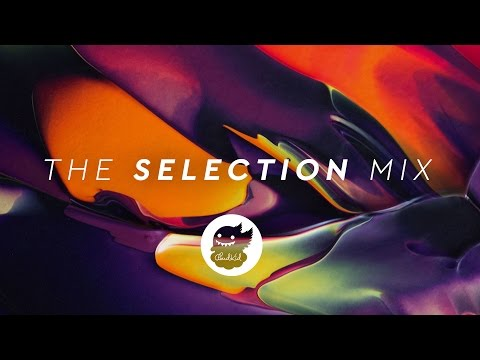 The Selection | Best of EDM Mix 2016 (Winter Holiday Mix)