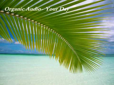 Organic Audio-Your Day
