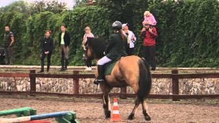 «Вятка Московии - 2013»- Региональная выставка лошадей в ЧКСК  «Лаир» 21