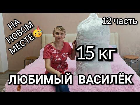 #12 Любимый Василёк. Покрывала, полотенца, одежда, подушки.