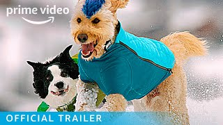 The Pack - Official Trailer | Prime Video