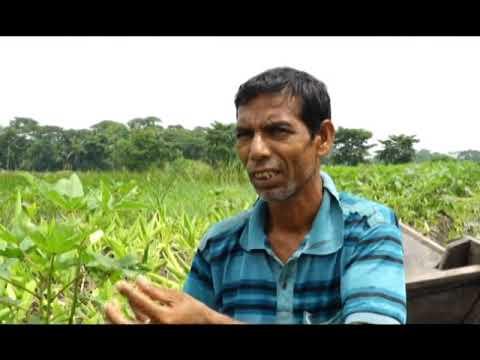 Download Banglar Krishi Episode no 1271 Vasoman Bede Sobji has Borishal 07 August 2020