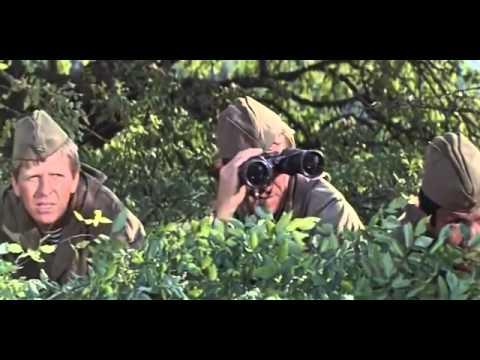 Война (2016) — смотреть онлайн — КиноПоиск
