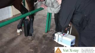Использование рентген аппарата PXP-20HF и PSA WI-FI приёмника, 12