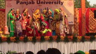Giddha 2016 DAV College, Sector 10 Chandigarh