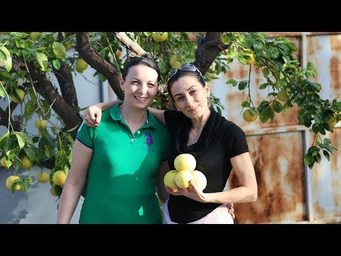 Heghineh Family Vlog #64  Հարևանները  Heghineh Cooking Show in Armenian