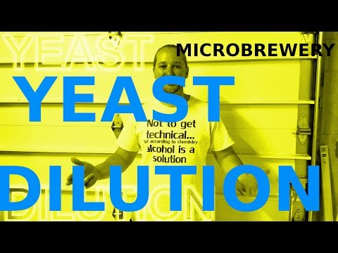 YEAST DILUTION & VIABILITY! How To: Microbrewery!