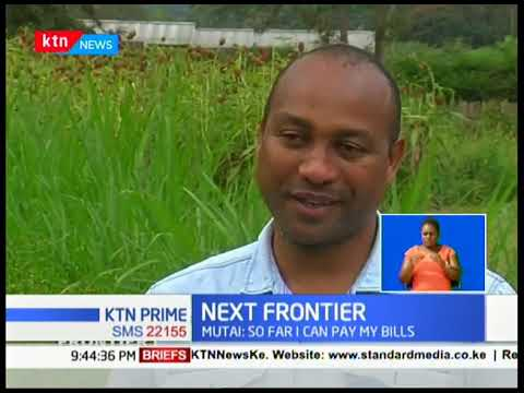 Seth Mutai quite high-paying job to venture into farming | The Next Frontier