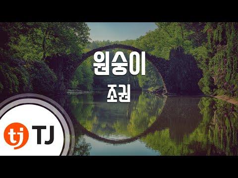 [TJ노래방] 원숭이 - 조권(Jo, Kweon) / TJ Karaoke