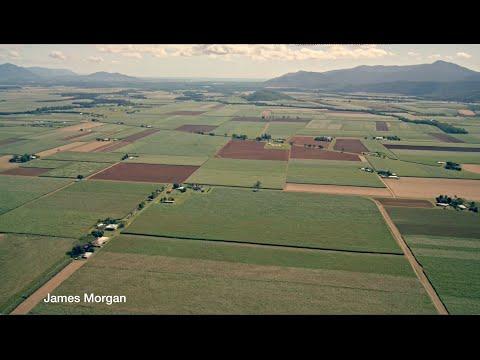 The evolution of environmental regulation