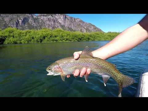 Rio Futaleufú | Pesca Na Patagônia | Fly Fishing | OCELLUS FISHING