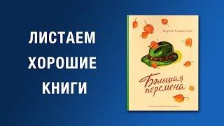 Георгий Садовников. Большая перемена