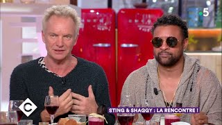 Sting & Shaggy au dîner ! - C à Vous - 24/04/2018