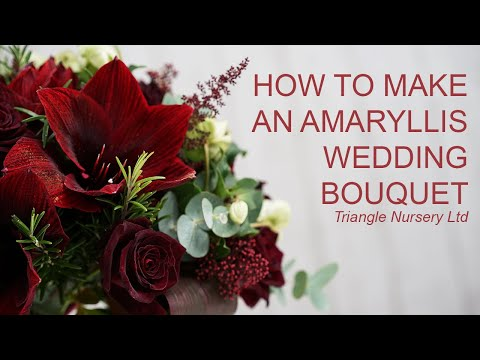 how-to-make-a-burgundy-bridal-bouquet-with-amaryllis