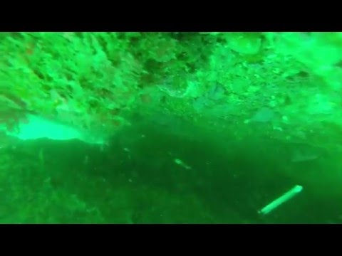 Peche sous marine au portugal
