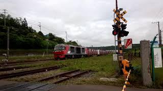 DF200 11牽引 2060レ 本輪西駅通過 JR貨物