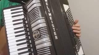 Nereye - Ayla Dikmen / Efige - Stelios Kazantzidis / Cigancica Mala - Esma Redzepova Accordion Cover Resimi