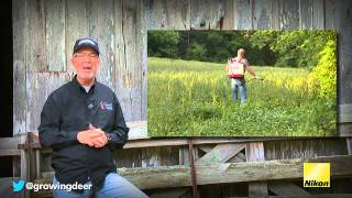How To Grow The Best Clover Food Plots