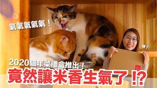 好味小姐-米香竟然暴怒-2020好味貓年菜禮盒上架囉-好味商店ep10