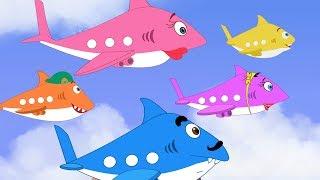 plane videos