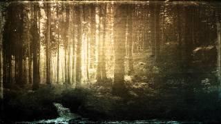 Sangre de Muerdago - Deixademe Morrer no Bosque (intro)