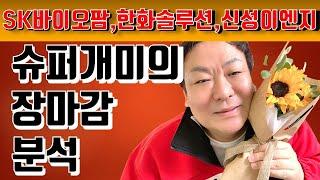 슈퍼개미 주식투자 방법 201008-SK바이오팜, 한화…