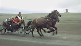 """А. Подболотов """"Ямщик, не гони лошадей"""" - Фильм """"Степь"""""""