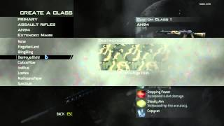 Many Different Call of Duty Weapons In MW2 RepZIW4