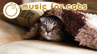 EXTREMELY Relaxing Cat Music  Send Your Cat to Sleep!