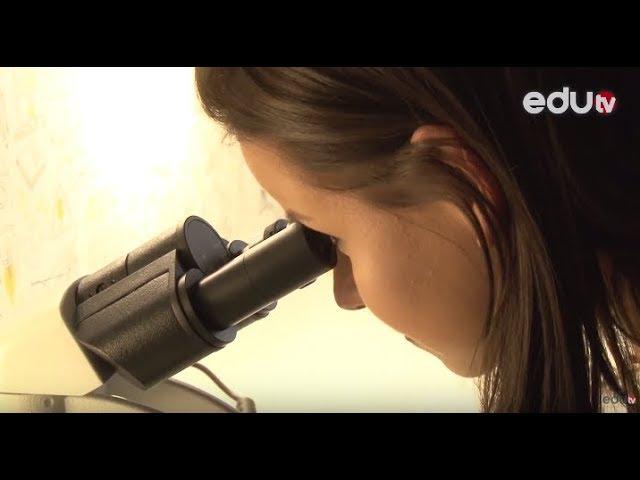 FENOMEN Centar za naučne interaktivne radionice