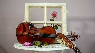 Rosen im Fenster #Violin #Guitar