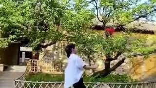 Shaolin Beats 🔥🐲武术少林功夫