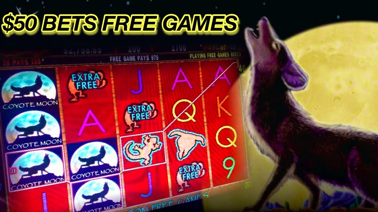 Coyote moon video casino games
