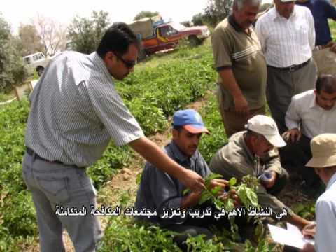 IPM FFS Voices of Farmers Jordan 2014