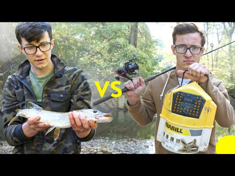 live-bait-only-fish-battle-/fish-fight-ep4