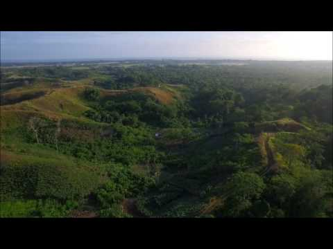 Edson's (Bloody) Ridge, Guadalcanal Province, Solomon Islands