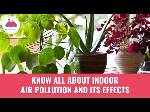 Indoor Air Pollution and its Effects - Health Tips