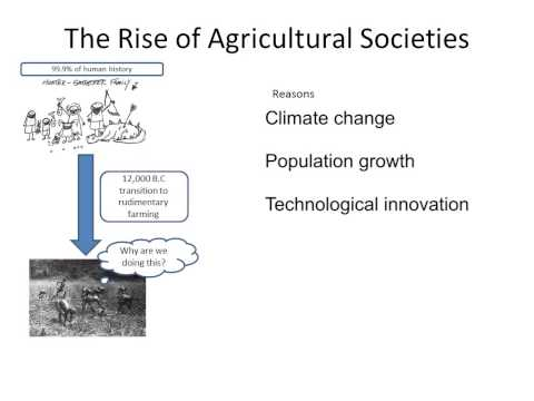 Rise of Agricultural Societies